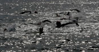 Com estreia da ultramaratona, Caraguatatuba recebe Campeonato Brasileiro e Copa Brasil de maratona aquática